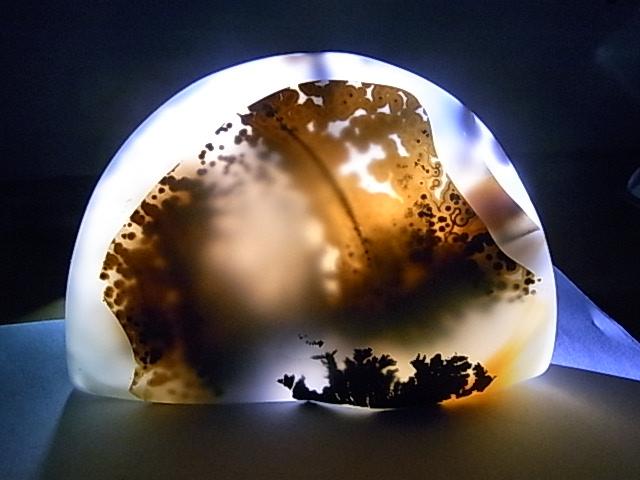 海洋玉髓精品 - 芦苇的天空 - 芦苇的天空的博客