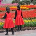 公园的花儿与少年