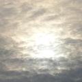 久候內陽光
