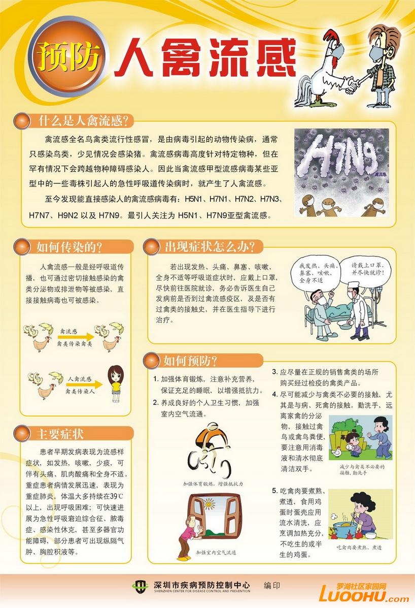 预防人禽流感知识宣传海报图片