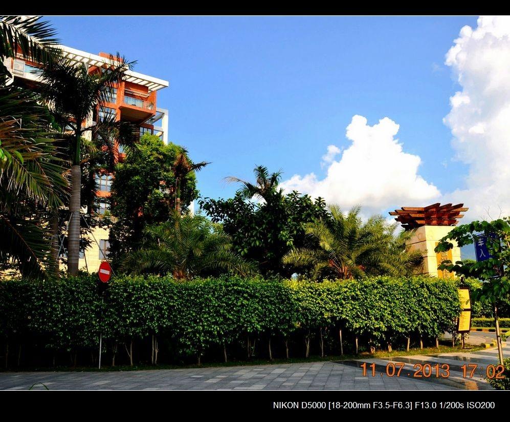 4.酒店入口处园林草木茂盛.jpg
