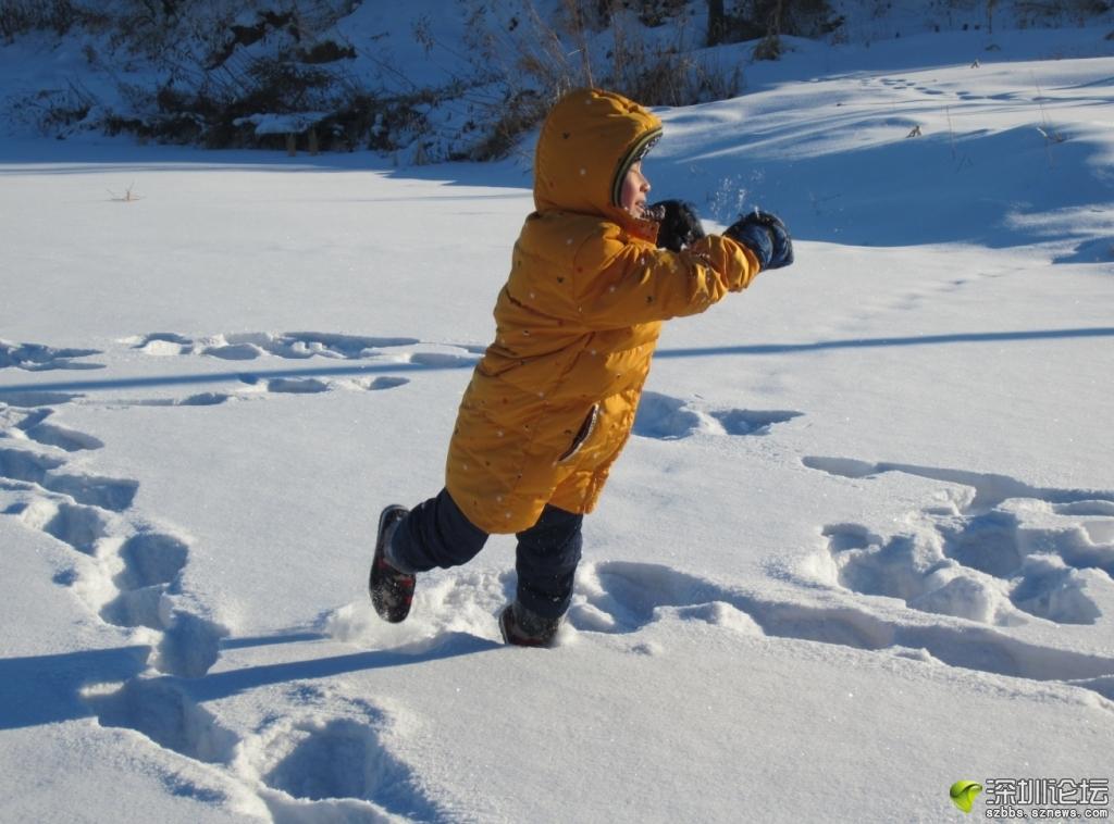 田野玩雪2.JPG