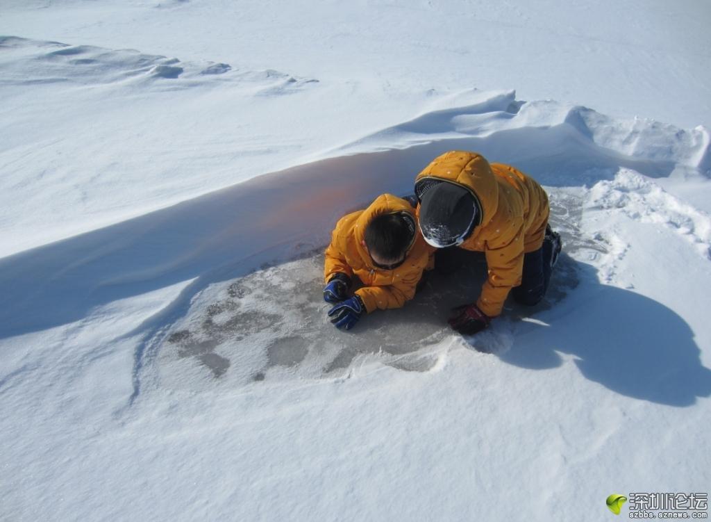 小家伙在琢磨这冰到底有多厚.JPG