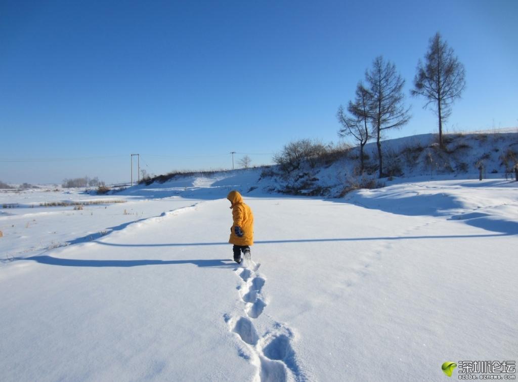 田野玩雪1.JPG