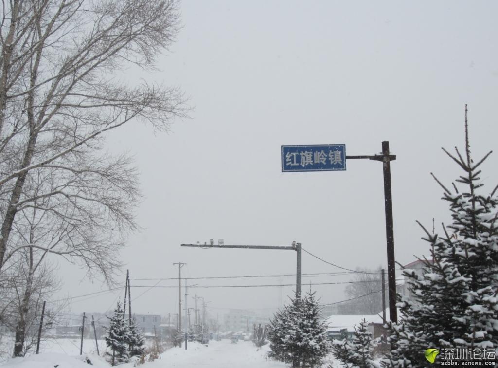 雪中的红旗岭镇牌.JPG