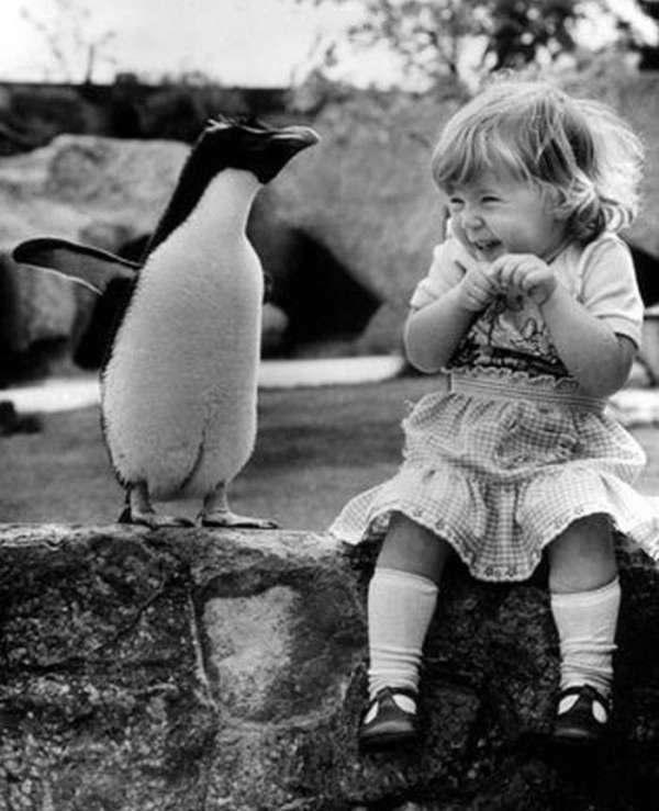 一位小女孩第一次接触到企鹅。