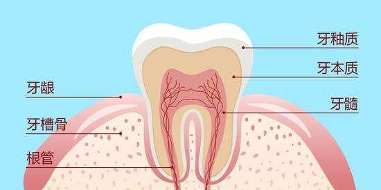 福州牙齿修复http://www.zzekq.com