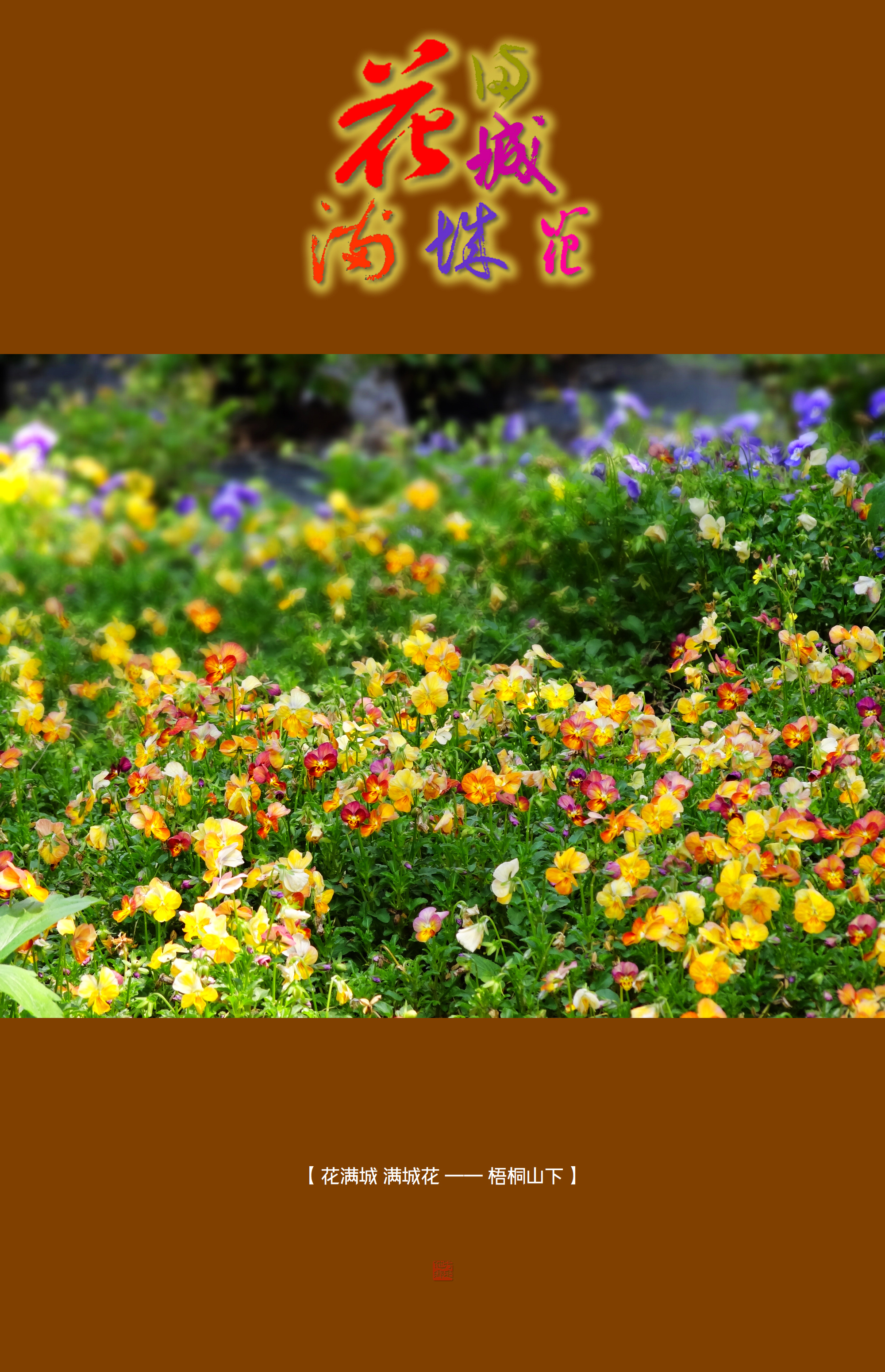 DSC01508 梧桐山.jpg