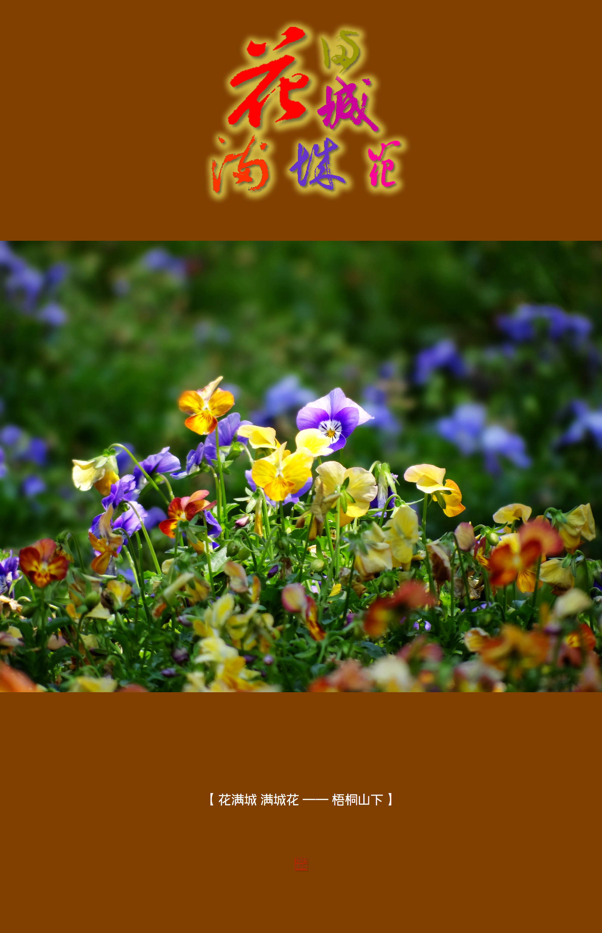 DSC01509 梧桐山下.jpg