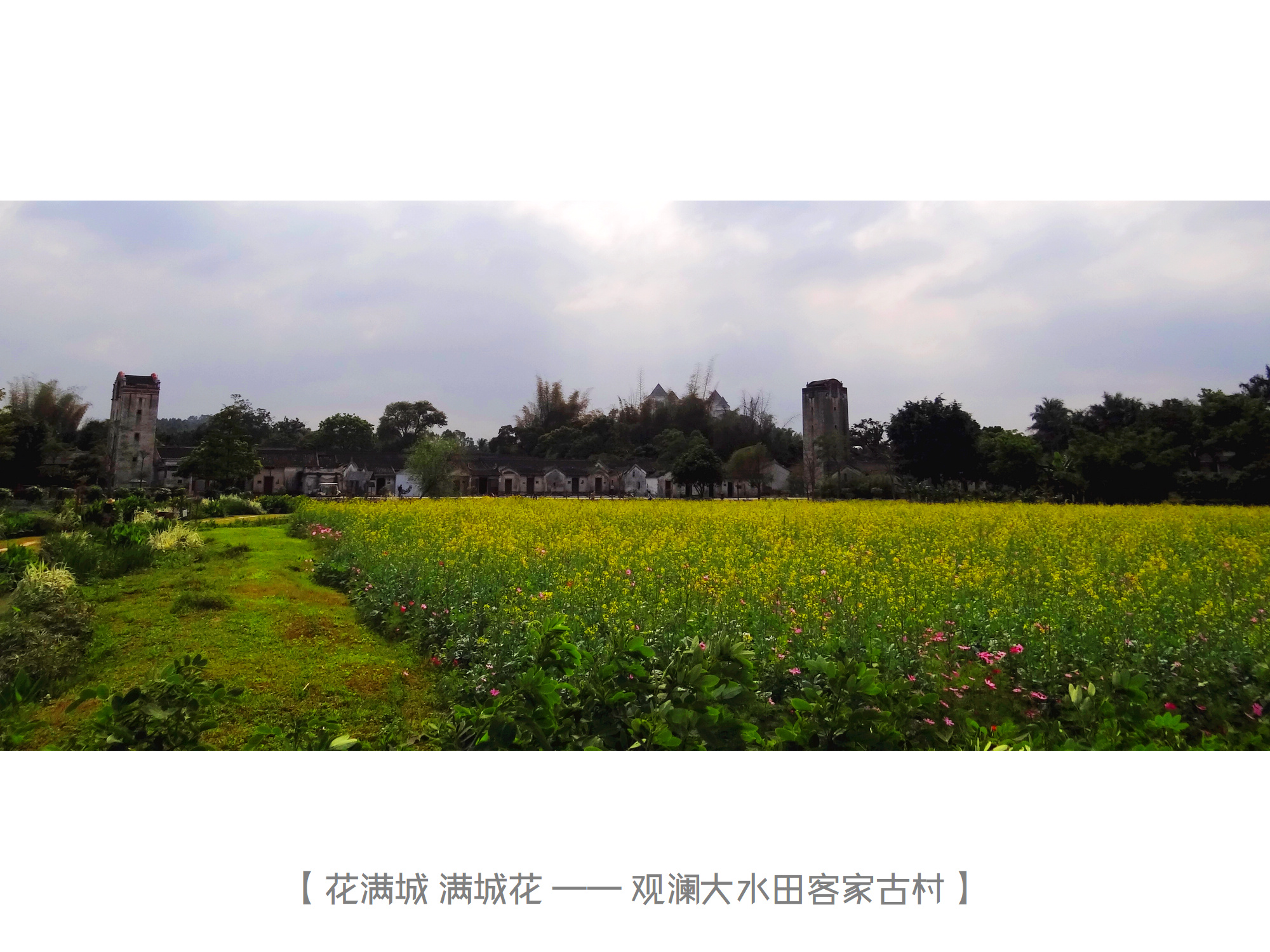 DSC01850 观澜大水田古村.jpg