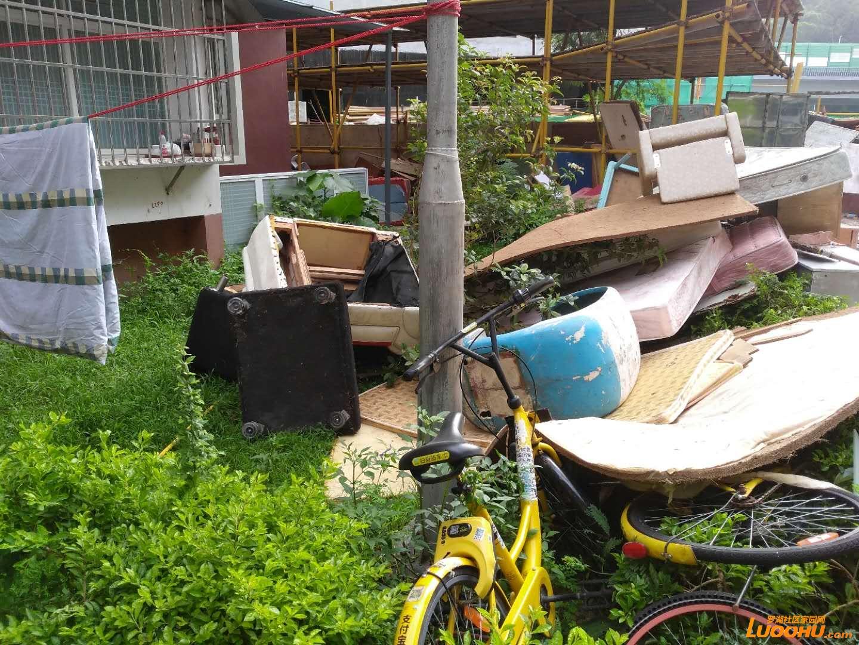曾几何时东乐花园是个宜居的小区