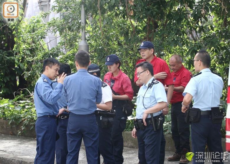 警方、消防及民安隊繼續搜索。(張世洋攝)
