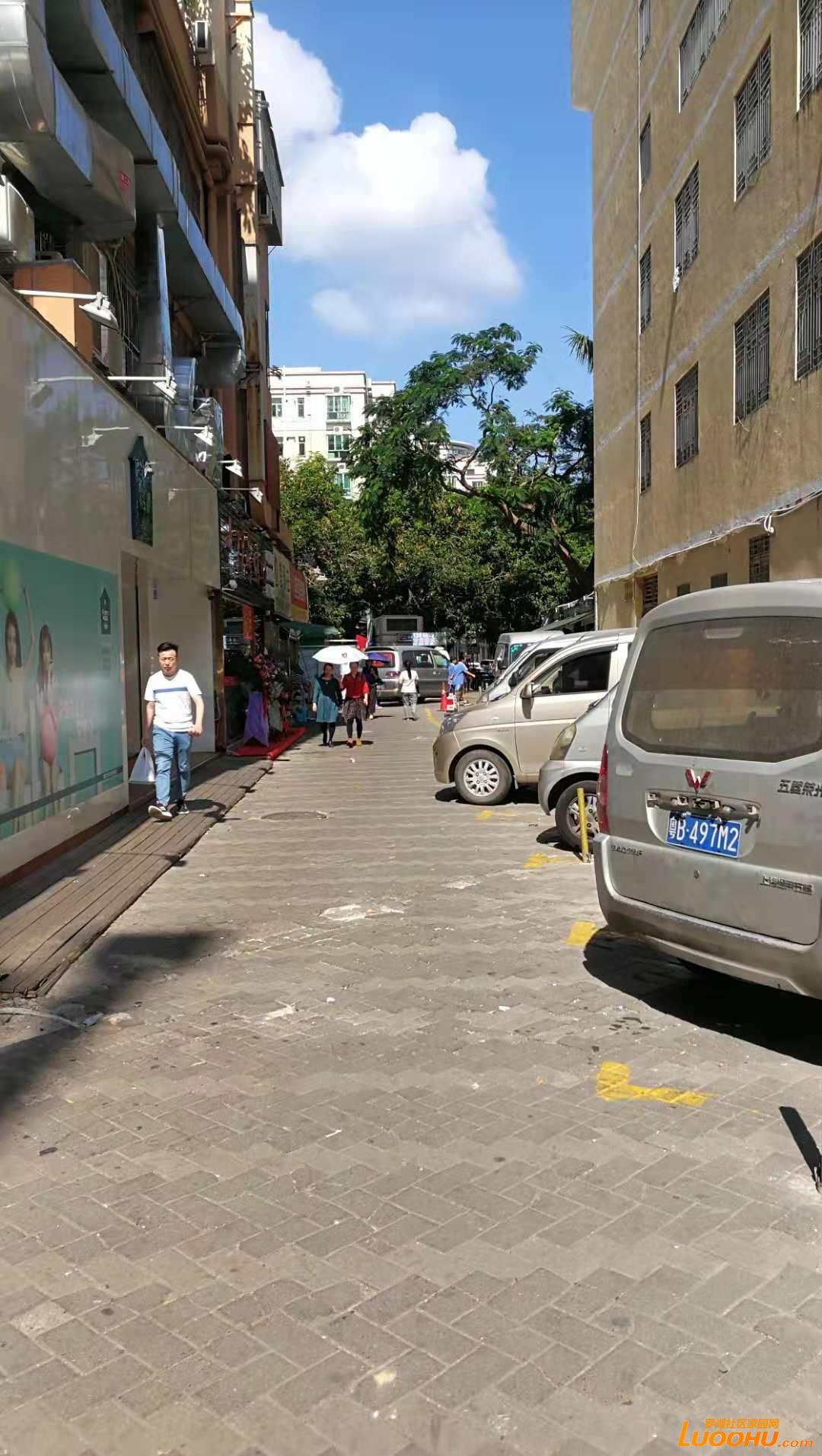 不宽的街道已被占据