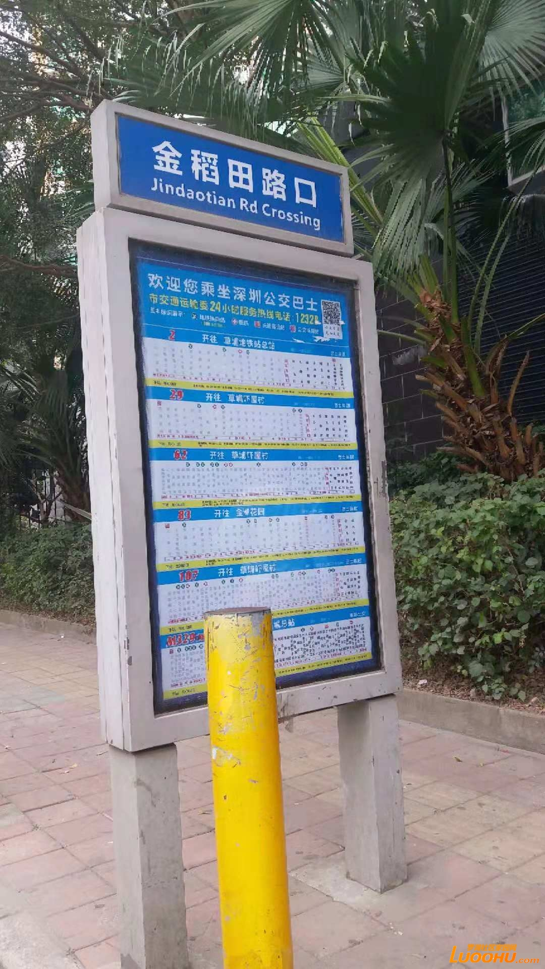 华港新村交通断面的先有公交线路