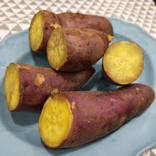 板栗薯.jpg