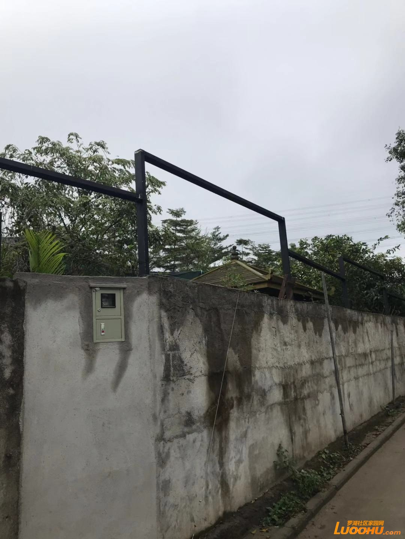 电表是大望股份公司七号厂迁移过来的。股份公司协助违法建筑的施工