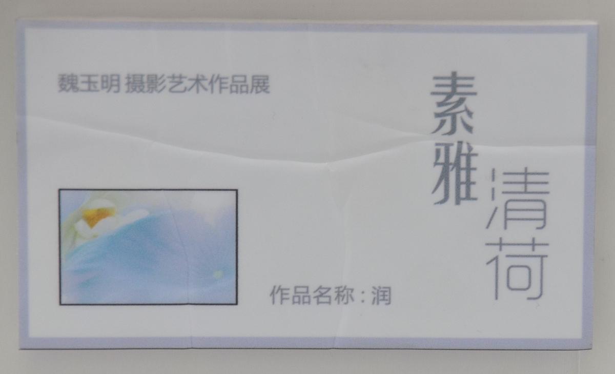 素雅清荷_342.jpg