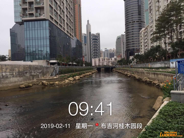 微信图片_20190211094631.jpg