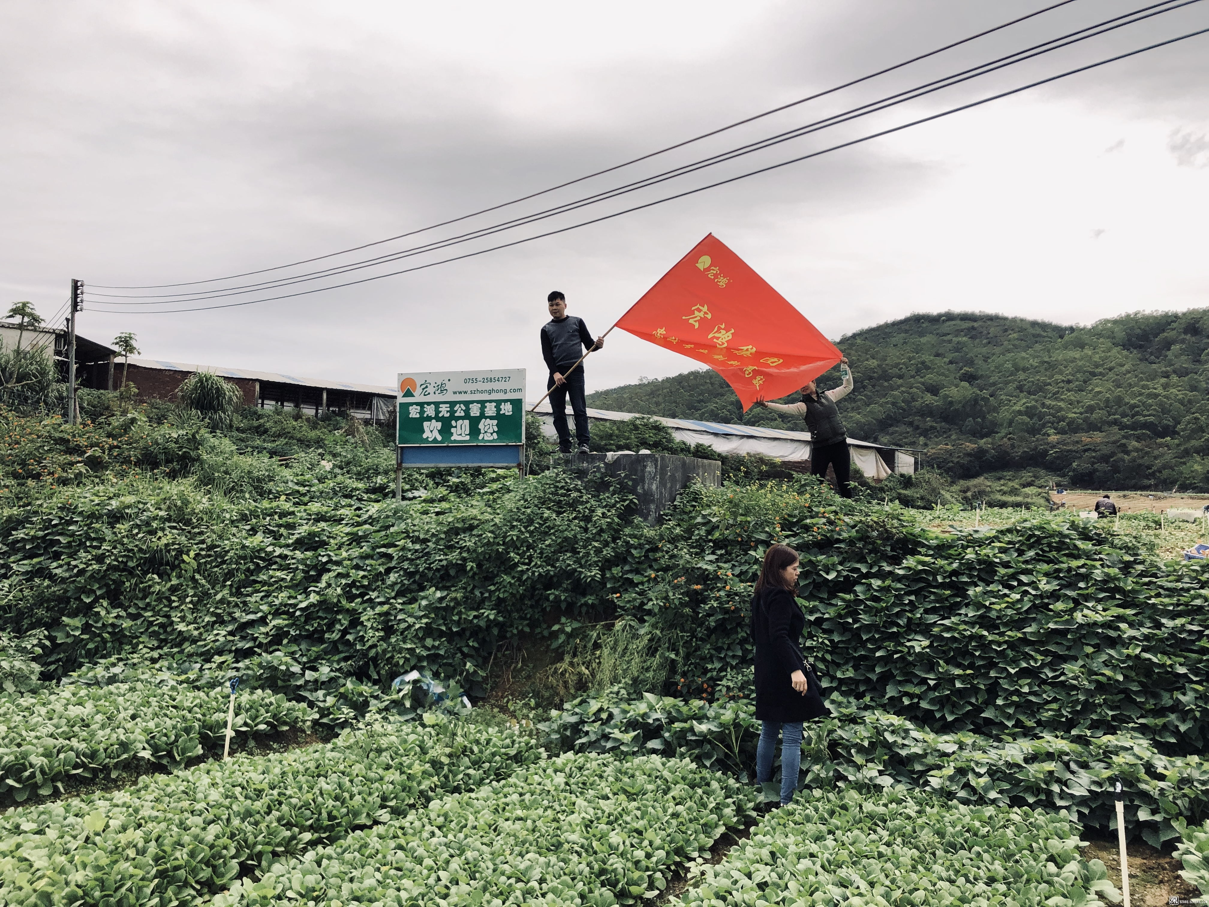 2019_03_08_12_24_IMG_2161_看图王.jpg