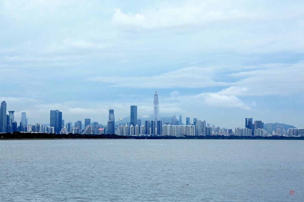 摄影月赛:六月主题——雨季深圳