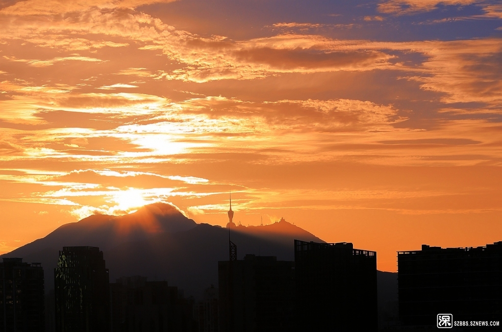 梧桐山.jpg