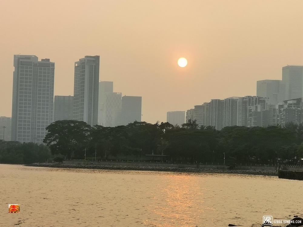 利奇马台风深圳湾20190809_829.jpg