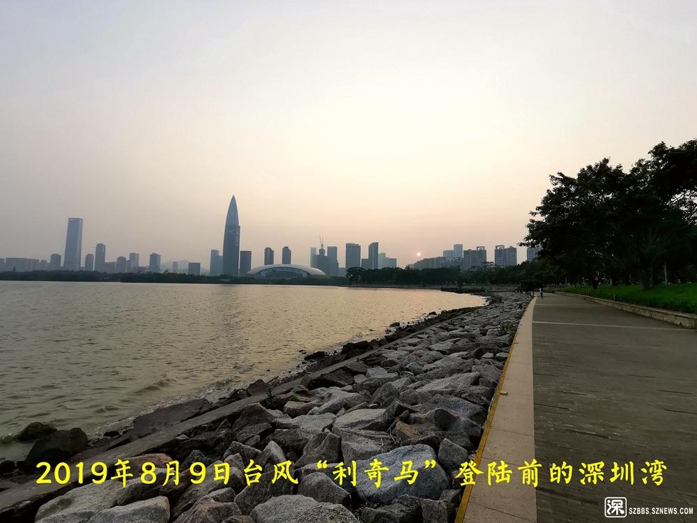利奇马台风深圳湾20190809_834.jpg