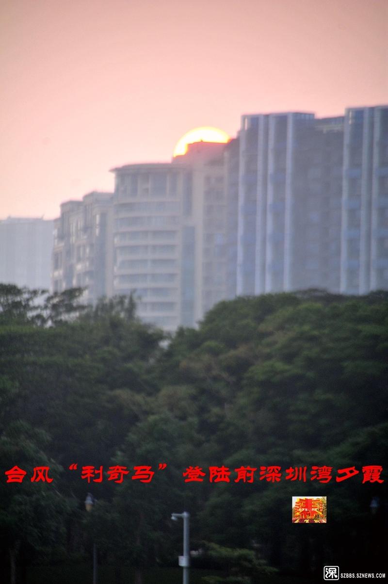 利奇马台风深圳湾夕霞_102.jpg
