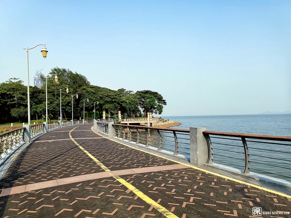 深圳大沙河桥20190809_634.jpg