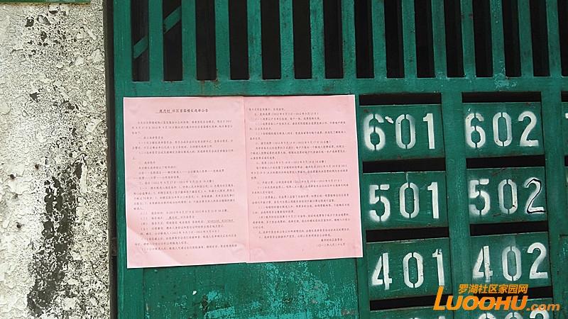 DSC01845_副本.jpg