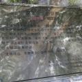 深圳坪山聚龙山公园