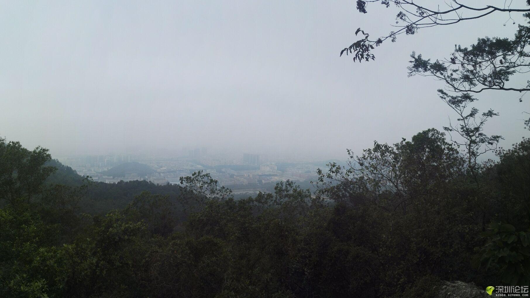 凤凰山 (4).jpg