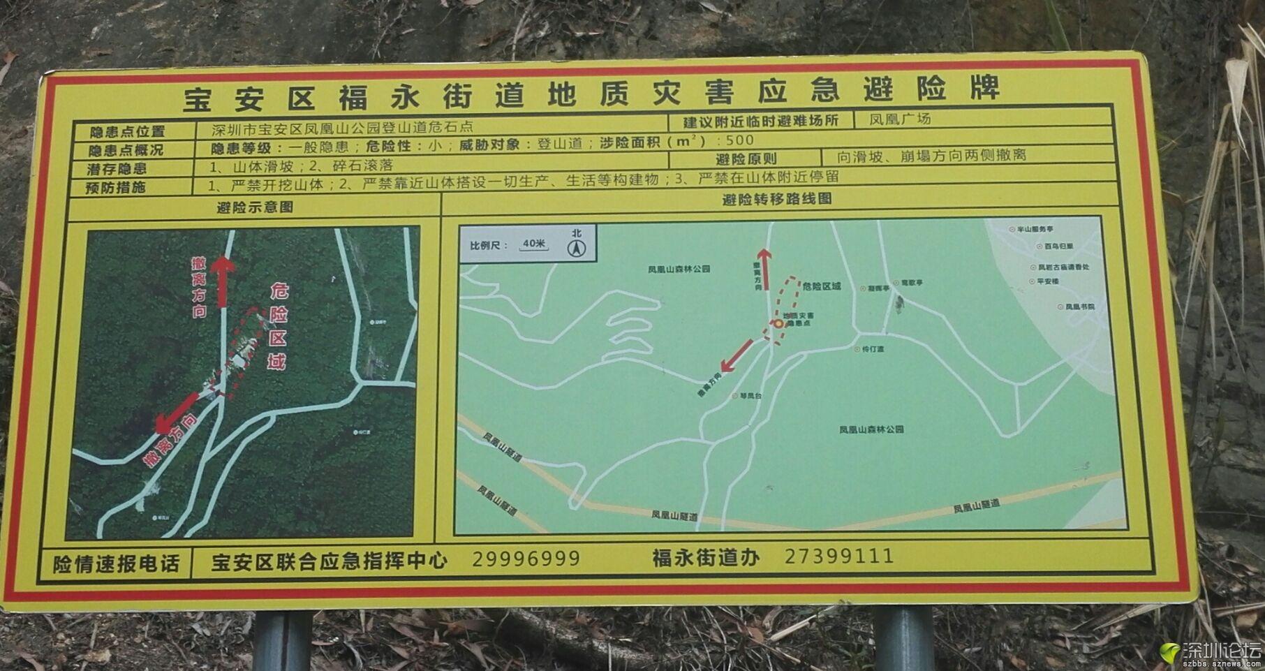 凤凰山 (7).jpg