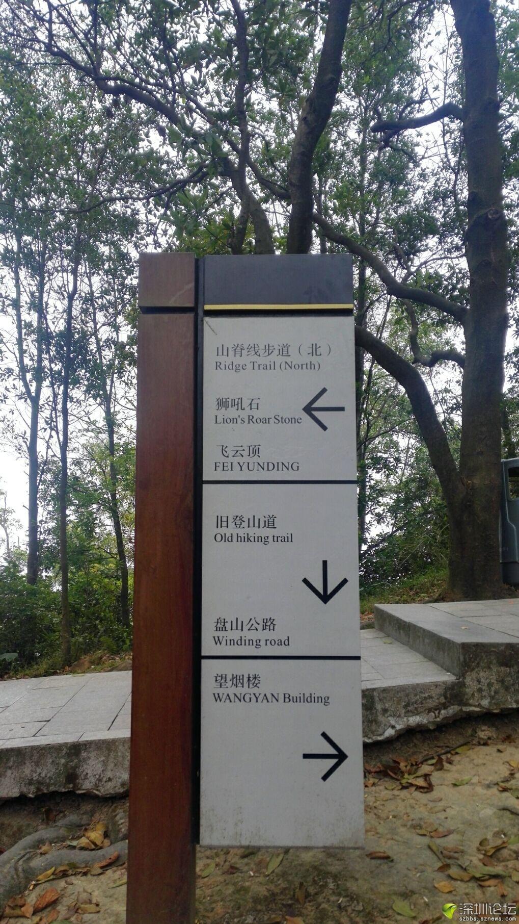 凤凰山 (14).jpg