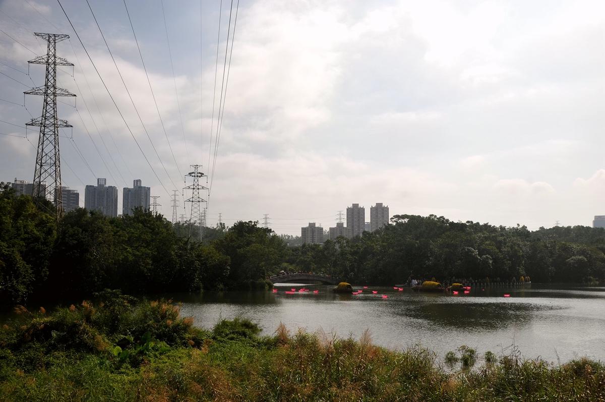 东湖水映_758.jpg