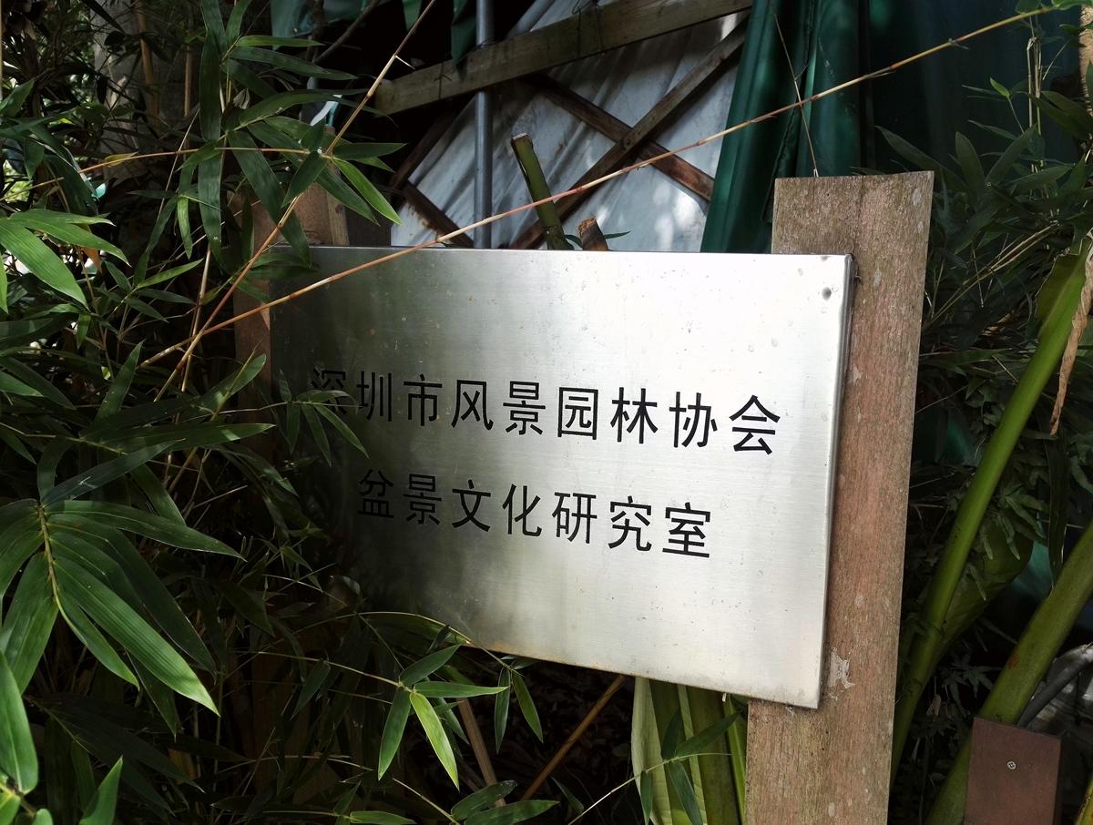 雕塑园20181201_293.jpg