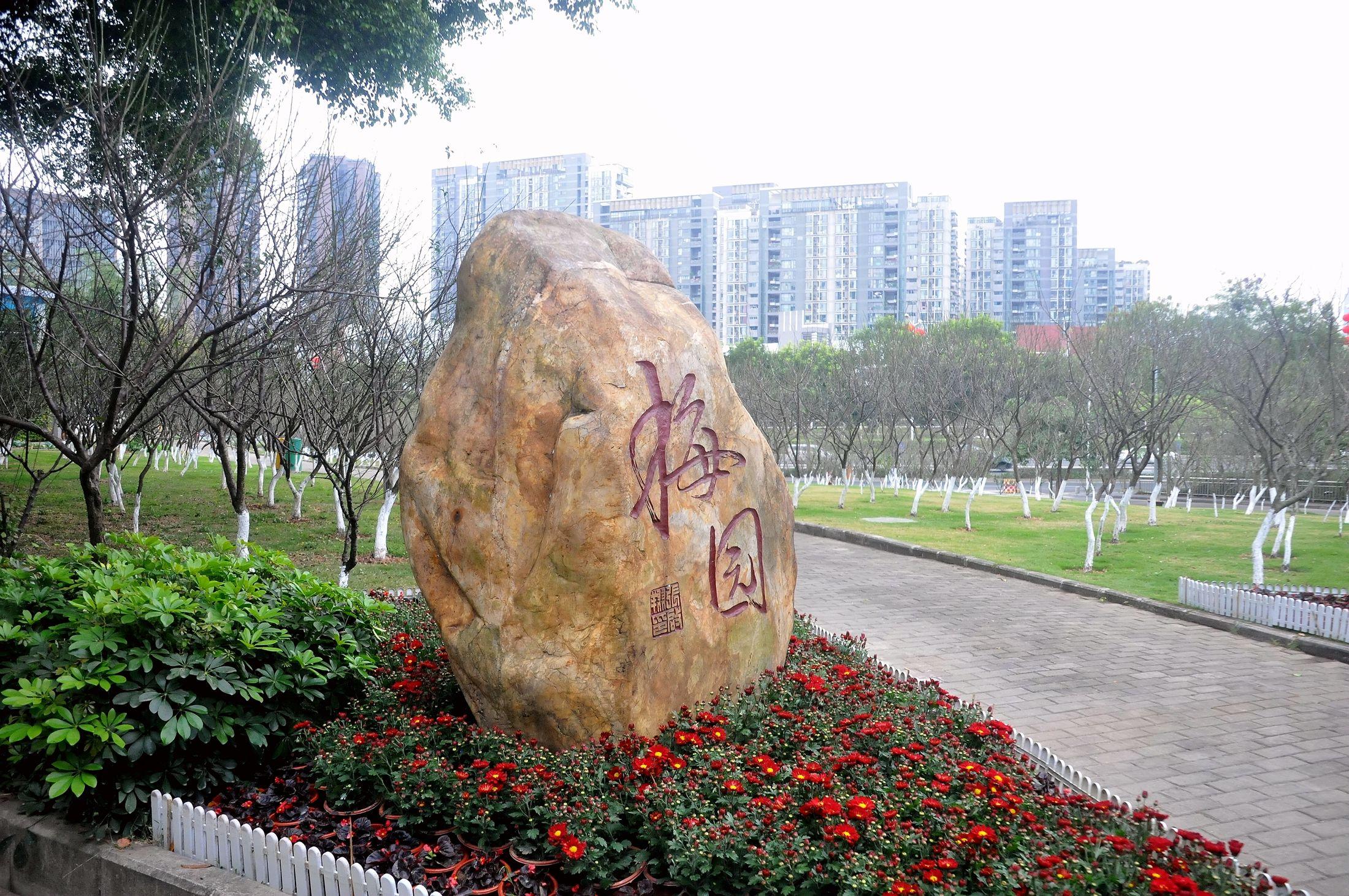 深圳梅园_467.jpg