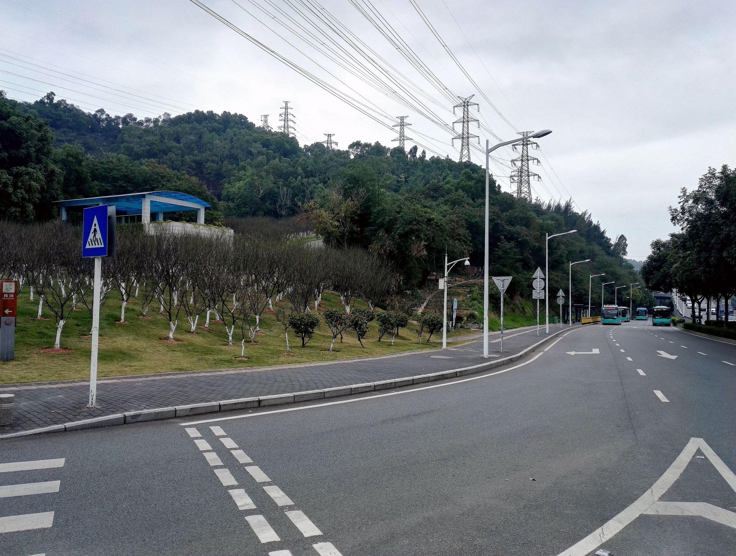 深圳梅园20170118_123.jpg