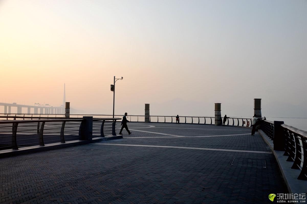 腊月深圳湾_673.jpg