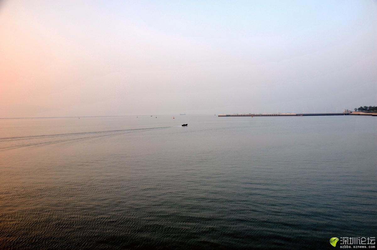 腊月深圳湾_674.jpg