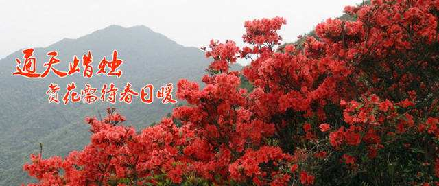 2345_image_file