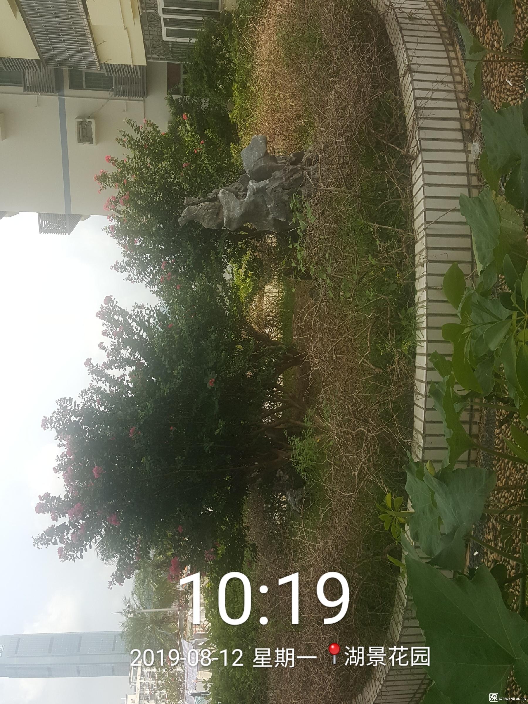 2019_08_12_10_19_07.jpg