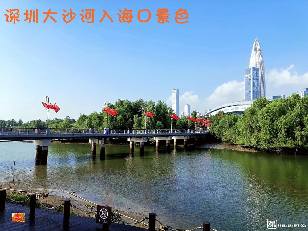 大沙河入海口20191005_243.jpg