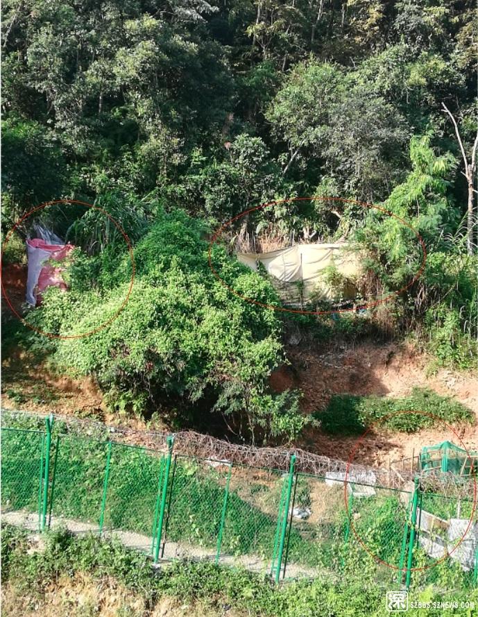 用烂布和塑胶布围着,绿色的山上长满了补丁