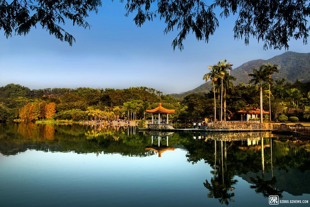 2019年12月14日 仙湖植物园