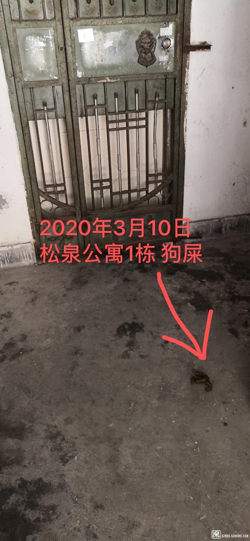 53AF8D13-43D7-4D98-8BEE-8FC29D14EE33.jpeg