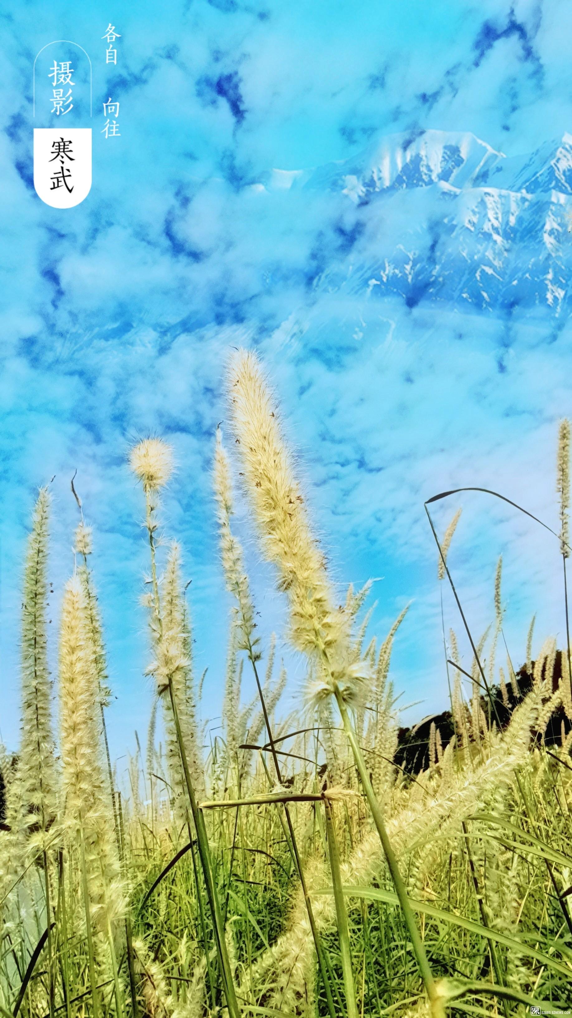 微信图片_20201114114552.jpg